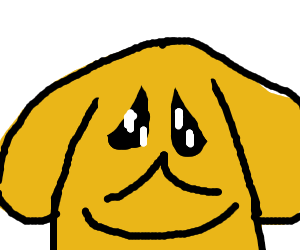 Golden pupper is lonely