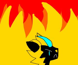Zeraora in Fire