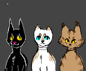 3 different coloured cats