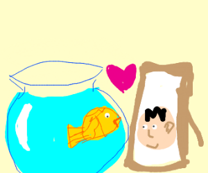 a hearty goldfish and a picture of the owner