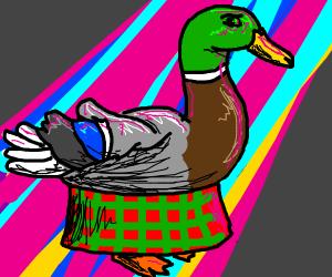 Duck Wearing Kilt