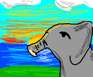 Elephant in a sunset near a river