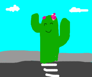 A cactus on a sidewalk