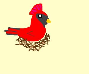 Swedish bird in nest