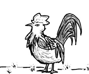 ac esque cockerel