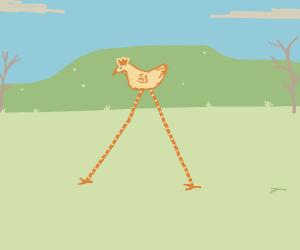 Big little chicken