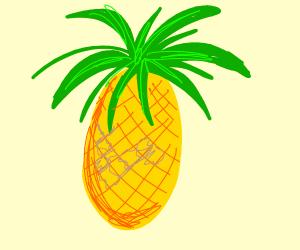 A pineapple