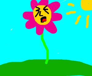 a human faced screaming pink flower..?