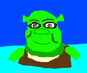 Shrek in ocean