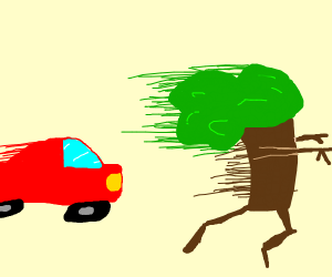 A tree running from a car