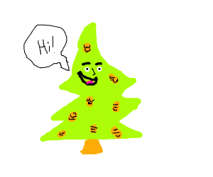 a pinetree guy