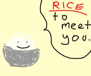 Punny Rice