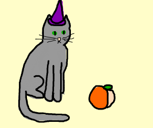Wizard cat looks at peach