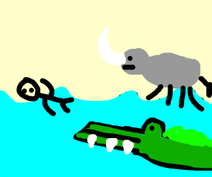 a man swiming with hippo and crocodile