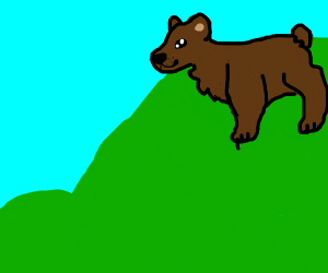 Bear on a hill