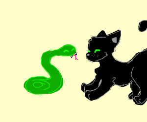 cat is playing with snake :)