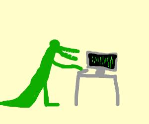 Alligator Coding