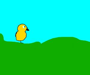 duck life duck