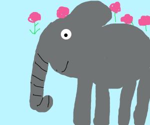 elephant with roses raining it