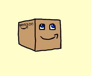 Living Amazon box