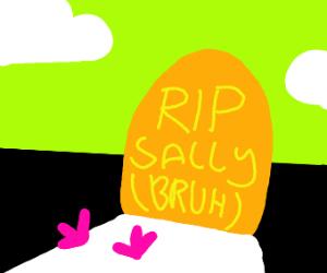 Gravestone that says RIP Sally (bruh)