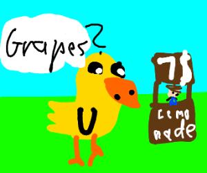 Duck Hey bam bam bam got any grapes?