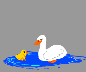 mom duck and baby duck in a puddle