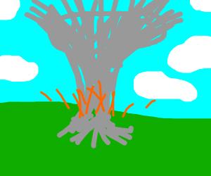 literally a mushroom cloud