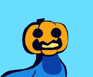 pumpkin pigeon