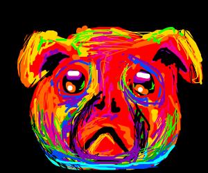 LSD Dog