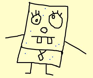Sponge from the Basement