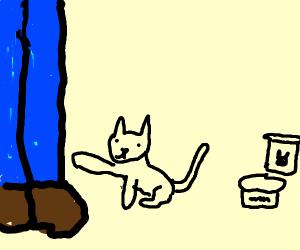 Cat wants food (give him the food pls)