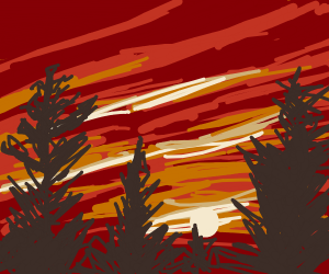 Sunset above the trees