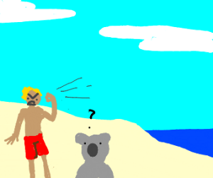 mad australian on a beach yelling at koala