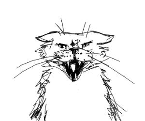 Cat Scream