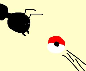 Catch the Poké-Ant