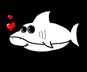SHARK LOVES LOVE! ! SO MUCH LOVE.