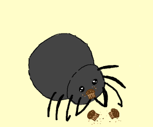 spider cant stop eating Muffincakes