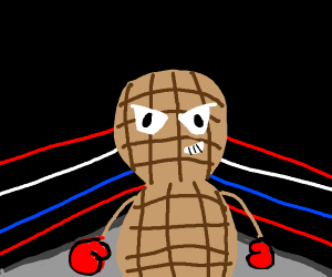 Peanut in a boxing ring