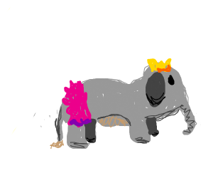 BOODIFUL elephant wamin that is also a prince