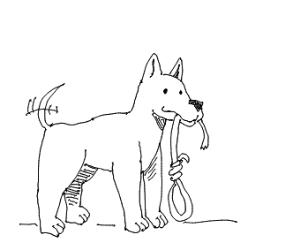 suicidal dog