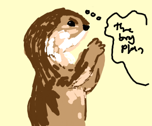 scheming otter