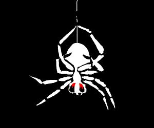 bloody spider