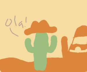 Cactus in the shape of a Cowboy Hat