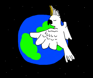 A cockatoo hugs the Earth.