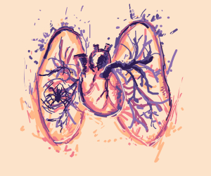 Spider in someone's lungs