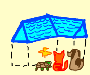 Animals looking at a floating blue roof