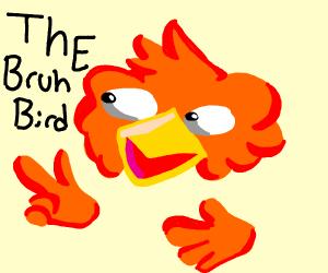 "The ""Bruh Bird."""