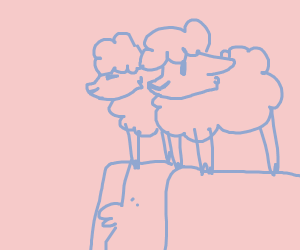 The council of water sheep