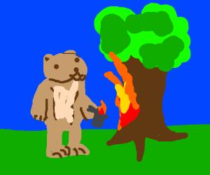 Bear sets fire to a tree